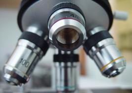 Un análisis de sangre podría sustituir a la amniocentesis
