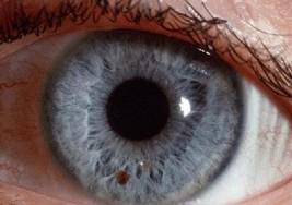 Jóvenes con parálisis cerebral podrán utilizar el ordenador con los movimientos del ojo