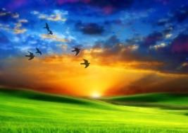 El paso a la eternidad