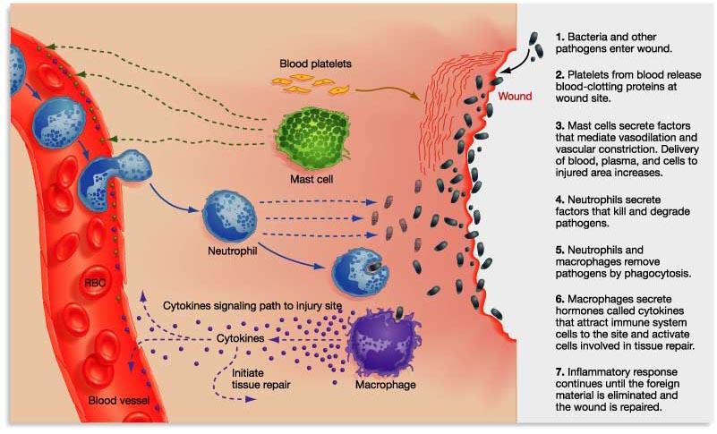 staphylococcal folliculitis #11