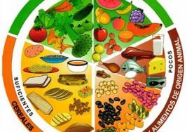 La dieta y su repercusión en las funciones cerebrales