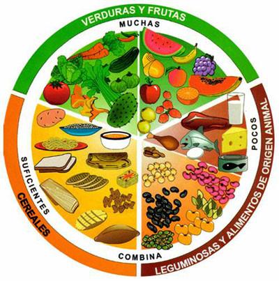 La dieta y su repercusi n en las funciones cerebrales todos somos uno - Alimentos ricos en fibra para ninos ...