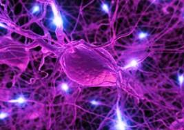 La esclerosis múltiple es la segunda causa de discapacidad entre los adultos jóvenes