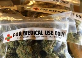 El cannabis podría ayudar a frenar la progresión de la esclerosis múltiple según estudios de la UMC