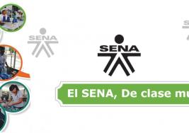 El servicio nacional de aprendizaje de Colombia SENA capacita a niños con Síndrome de Down