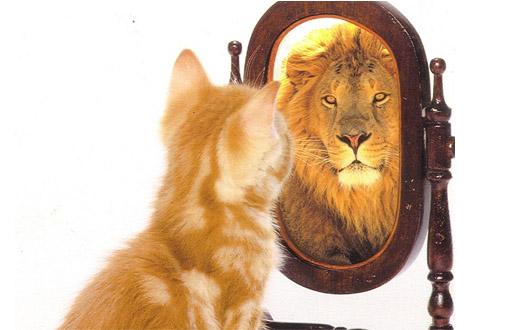 La historia de la autoestima – Todos Somos Uno