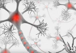 10 datos sobre la esclerosis múltiple