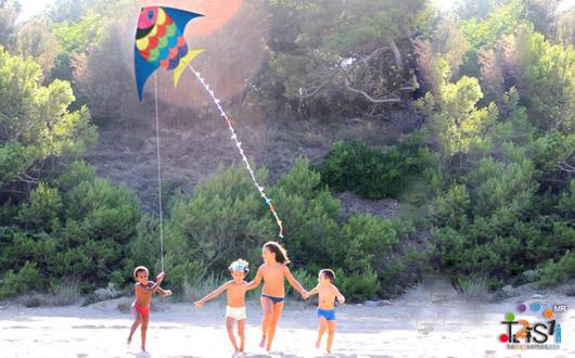 Niños volando un cometa