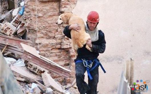 Mujer con síndrome de Down salva perro en explosión en un edificio en Argentina