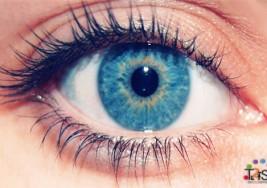 """Colombia es el primer país en erradica la """"oncocercosis"""", enfermedad también conocida como """"ceguera de los ríos"""""""