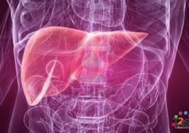 Cómo reconocer los síntomas de una enfermedad del hígado