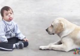 La conmovedora historia de un niño con síndrome de Down y su perro