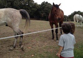 Actividades para personas con discapacidad física