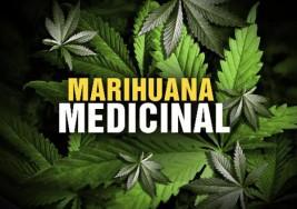 ¿Podría la marihuana medicinal aliviar algunos síntomas de la esclerosis múltiple?