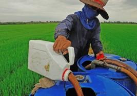 Asociación el autismo y la discapacidad intelectual con los pesticidas