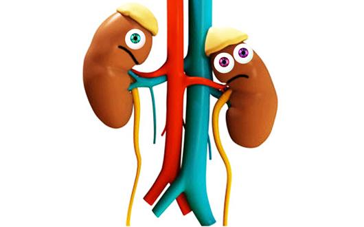 insuficiencia renal cronica en niños pdf