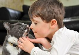 Autismo: estar atentos para hacer la consulta temprana