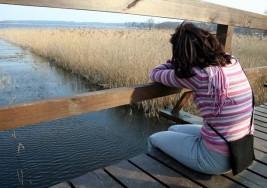 Causas que generan autismo podrían venir de factores ambientales