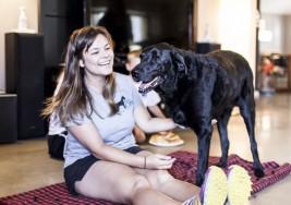 Familia retrató el último día de su perro