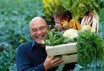 Alimentación adecuada para las enfermedades de los mayores