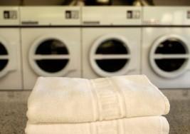 Robo afecta a lavandería atendida solamente por jóvenes con síndrome de down