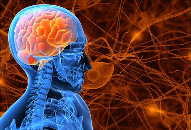 Científicos hondureños descubren nuevo gen de la epilepsia