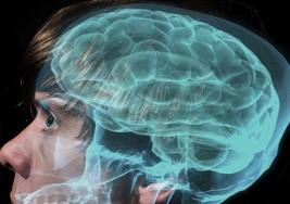 Cinco enfermedades mentales en profundidad