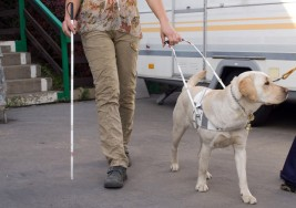 10 datos sobre la ceguera y la discapacidad visual