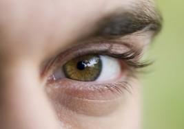 Retinopatía diabética es la principal causa de ceguera