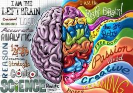 Autismo: ¿Qué pasa en el cerebro?