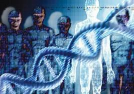 Aumenta la contribución genética a la parálisis cerebral