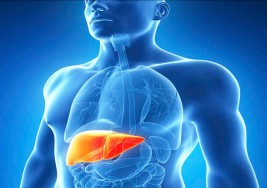 La hepatitis C podría erradicarse sin vacuna, solo con el tratamiento