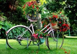 Primavera recién llegada, tiempo de renovación y renacimiento