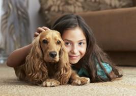 Perros trabajan de terapeutas para niños autistas y ciegos