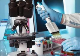 Ensayan en humanos la primera terapia selectiva contra la esclerosis múltiple