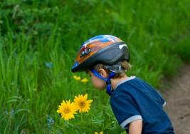 Reacción a los olores podría ayudar a diagnosticar el autismo en niños