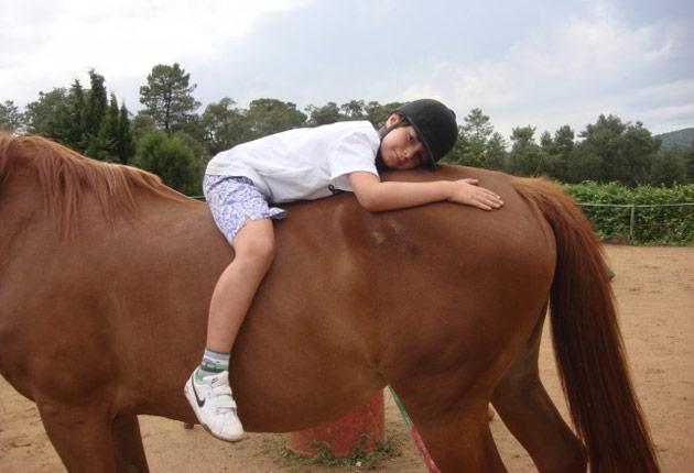 Autismo y caballos, una maravillosa relación