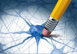 ¿Tienen algo en común el autismo y la esquizofrenia?