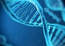 La secuenciación de 10.000 genomas explora el origen del autismo o la osteoporosis