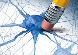 Ayuda a un equipo español de investigadores a combatir la esclerosis múltiple