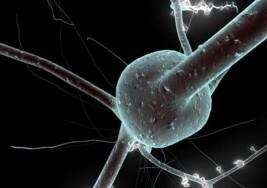 La prevalencia de la esclerosis múltiple se duplica en 15 años