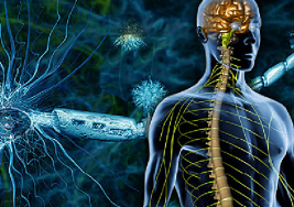 Experto avisa de que la esclerosis múltiple sigue siendo la primera causa de discapacidad por enfermedad en jóvenes