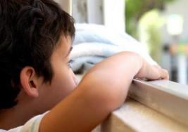 Identifican un supresor de memoria que puede desempeñar un papel en el autismo