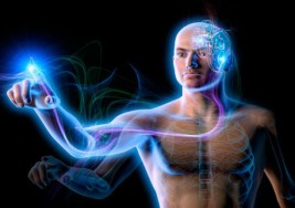 ¿Qué te hace vulnerable a la esclerosis múltiple?