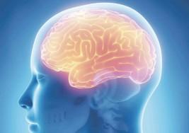 Terapia con electrodos aceleraría recuperación tras parálisis cerebral