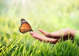 La importancia del optimismo ante la enfermedad
