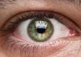 Vía la retina buscan predecir evolución de pacientes con esclerosis múltiple