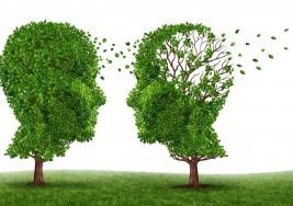 Así es como la marihuana podría curar el Alzheimer y la Esclerosis múltiple