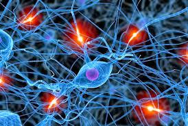 Acceso a terapias para pacientes con Esclerosis Múltiple