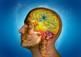 Derrame cerebral: una enfermedad ante la cual debes estar alerta (te puede estar pasando sin saber)